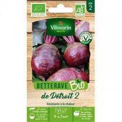 Betterave DE DETROIT 2 BIO - VILMORIN