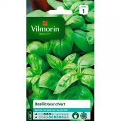 Basilic GRAND VERT - VILMORIN