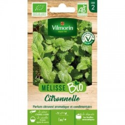 Melisse Citronnelle BIO - VILMORIN